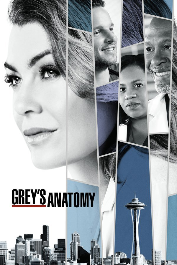 Grey\'s Anatomy: Season 13 [6 Disc Set]   TV Series   Film & TV ...