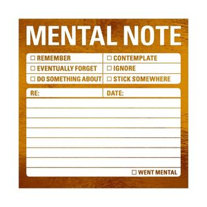 Knock Knock Mental Note Metalic Stickies